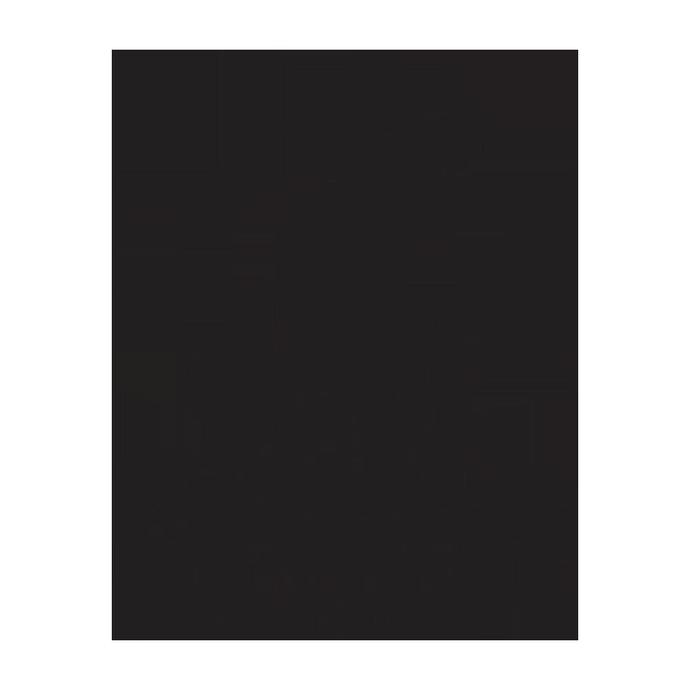 Sabal Homes Tampa Custom Luxury Home Builder FishHawk